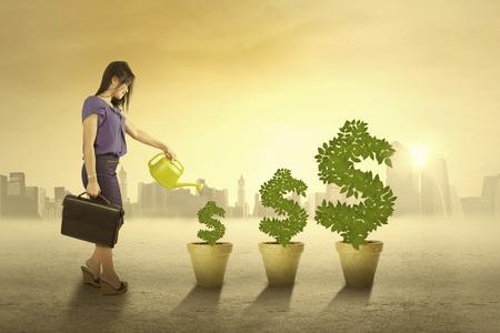donna ricca: Ritratto di donna d'affari innaffiare le piante di denaro al mattino per mantenere la crescita