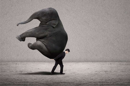 power within: Business manager with suit lifting elephant on grey background Stock Photo