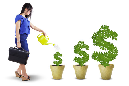 watering pot: Portrait of businesswoman watering the money trees to keep its growth, isolated over white