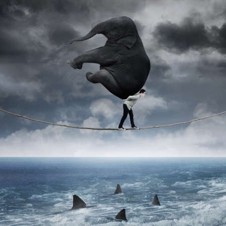 rope: Young asian man carrying a big elephant on the rope above sea Stock Photo