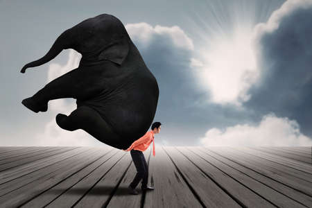 carrying heavy: Portrait of businessman carrying heavy elephant Stock Photo