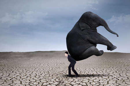take charge: Businessman lifting big elephant on dry ground - leadership concept