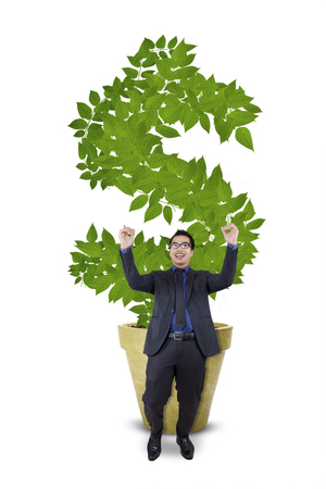money symbol: Portrait of ecstatic businessman celebrating his success in front of money tree with dollar symbol