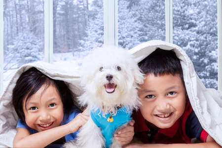 blanket: Image of two happy children and their puppy lying under blanket in bedroom with winter background on the window Stock Photo