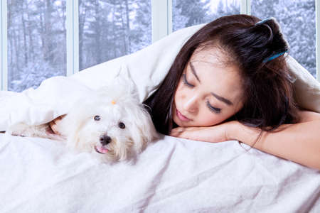 girl home: Attractive young woman sleeping on the bed with her pet under blanket, shot with winter background on the window Stock Photo