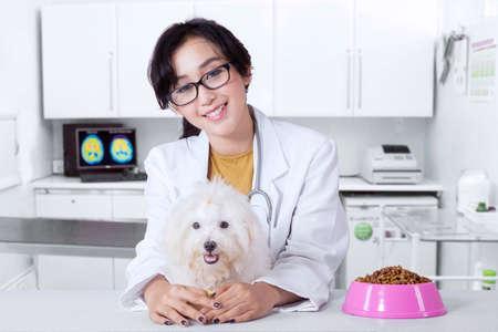 botanas: Retrato del veterinario amigable joven sonriendo a la cámara con el perro maltés y un plato de aperitivo de perro en la mesa