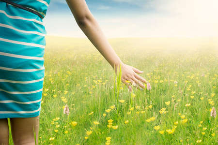 plant hand: Closeup of young woman hand touching blossom flowers while walking on the meadow at springtime