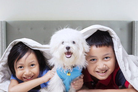 Two attractive children having fun with their dog at home while lying under blanket