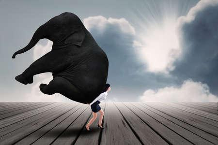 carga: Retrato de negocios levantar objetos pesados ??elefantes bajo el cielo azul