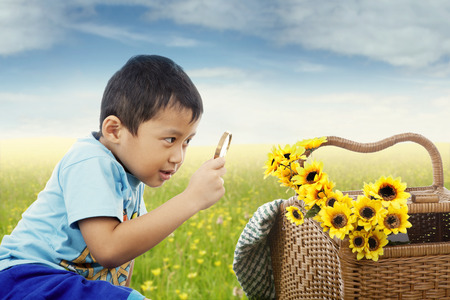 observe: Portrait of male student using magnifying glass to observe flowers on the meadow
