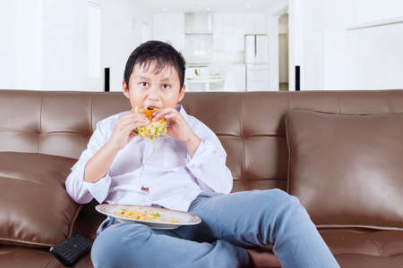 asian boy: Cute boy sitting on the  couch while watching tv and eating a cheeseburger with french fries at home