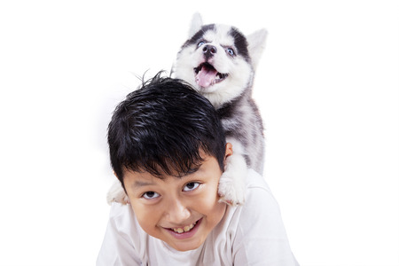 amigos abrazandose: Close up of happy little boy playing in the studio with siberian husky puppy, isolated on white background Foto de archivo