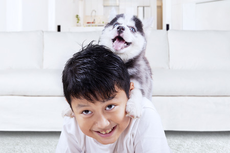 amigos abrazandose: Photo of happy little boy playing with siberian husky puppy in the living room at home