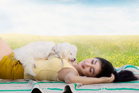 woman in field: Picture of a beautiful young woman sleeping on the meadow with a maltese dog