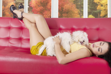 sofa: Beautiful young asian woman sleeping on the sofa while hugging her puppy at home