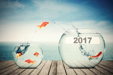 bowls: Picture of goldfish moving to larger aquarium with number 2017