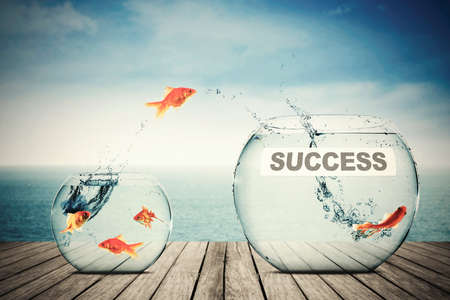 goldfish jump: Picture of goldfish leaping to another aquarium with success word, concept of better business