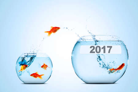 goldfish jump: Golden fish leaping to larger fishbowl with number 2017, isolated on white background