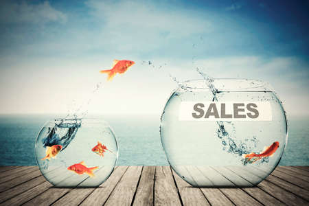 goldfish jump: Picture of golden fish jumping to another aquarium with sales text Stock Photo