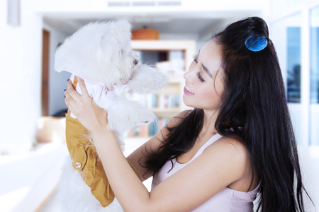hair roller: Portrait of young Asaian woman is holding and smiling with her Maltese dog while standing in the living room Stock Photo