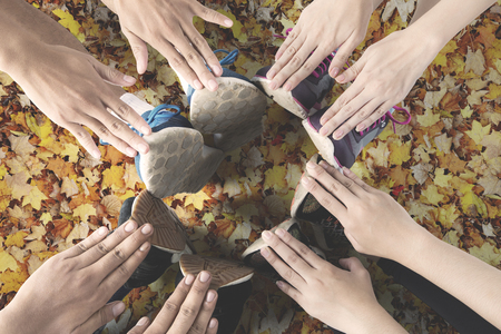 Top view of athletes make a circle with their hands and feet on the autumn leaves at park
