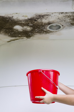 Hands of young woman collecting drops rainwater from the damaged ceiling while holding a bucket