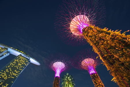 Singapore. November 06, 2017: Beautiful view of Supertrees Grove in Gardens by the Bay near the Marina Bay Sands Hotel Singapore