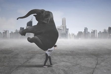 Picture of young businessman wearing casual clothes while carrying an elephant with modern city background