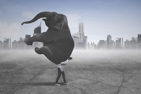 Foto van jonge zakenman die vrijetijdskleding draagt terwijl hij een olifant met moderne stadsachtergrond draagt