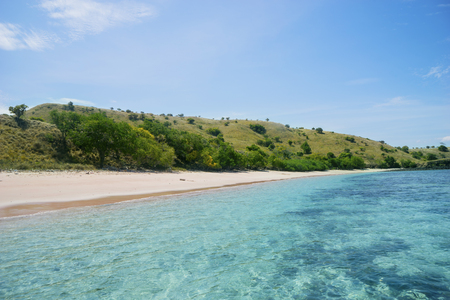 Image of enchanting pink beach with green hill under blue sky