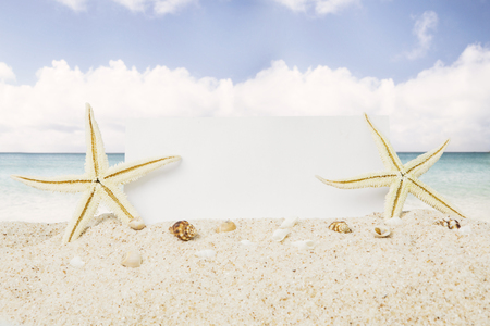 Summer vacation concept. Two starfishes with an empty banner at tropical beach