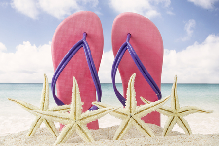 Close up of four starfish with pink flip flops in the tropical beach. Summer vacation concept Stock Photo