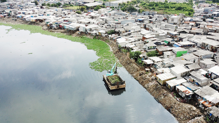 Aerial view of an excavator removing water plant on the lake with slum houses background on the lakeside Stock Photo