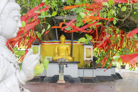 Image of Kwan Im statue with golden Buddha statue under bodhi tree with red Chinese talisman in buddhist temple at Semarang, Indonesia