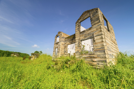 Image of a ruined house with apertures of windows and doors with bushes. Shot in the forest