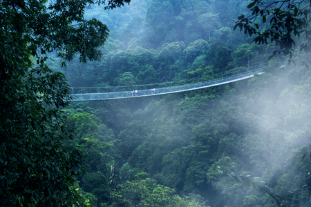 Aerial view of beautiful Situ Gunung suspension bridge at misty morning in Sukabumi, West Java, Indonesia