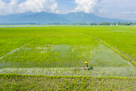 Bali - Indonesia. April 05, 2019: Male farmer plowing rice field in mountain background in Bali, Indonesia