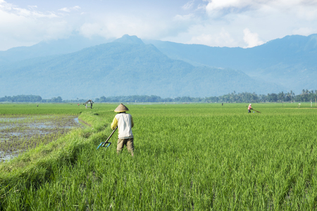 Bali - Indonesia. April 05, 2019: Two farmers plowing farmland with beautiful mountain background in Bali, Indonesia
