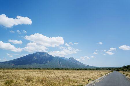 Beautiful view of Bekol Savanna with Mount Baluran background during dry season in Situbondo at East Java, Indonesia Stok Fotoğraf