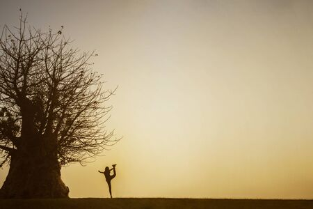Silhouette of young woman doing yoga exercise near a big tree at sunset time Reklamní fotografie