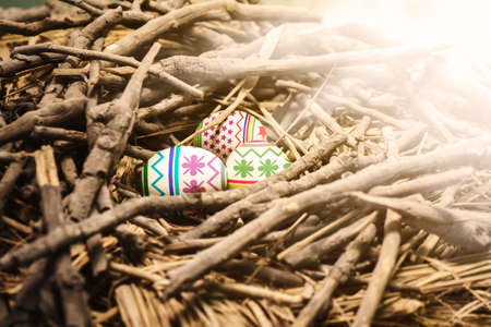 Image of three colorful easter eggs on nest of heaped branches with sunlight background