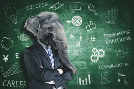 Contemporary art collage concept. Picture of confident male manager with head of elephant standing with doodles background Zdjęcie Seryjne