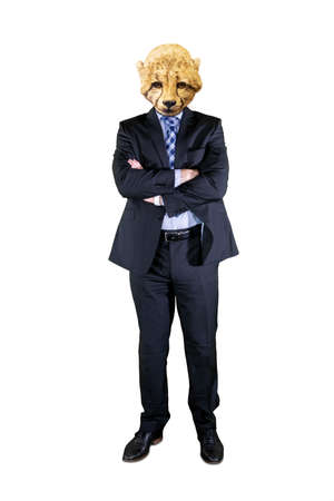 Contemporary art collage concept. Picture of confident businessman with head of cheetah standing in the studio. Isolated on white background Zdjęcie Seryjne