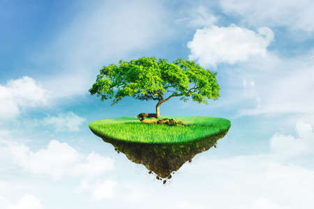 Image of floating farmland soil on the sky with big green tree Foto de archivo