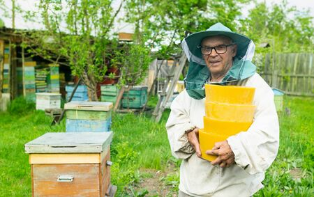 A man aged beekeeper holds in his hands wax in round forms. Beekeeping work on the apiary. Selective focus.