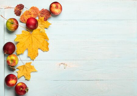 Autumn yellow dry maple leaves and red ripe apples on a blue wooden background. Flat layout. Copy space. Autumn concept. 写真素材