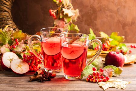 Autumn drink sangria with apple berry and cinnamon. Autumn concept. Selective focus. Copy space.