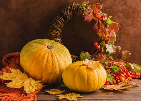Organic fresh pumpkin knitted cozy scarf red berry on a wooden background. Autumn harvest. Natural rustic style. Reklamní fotografie