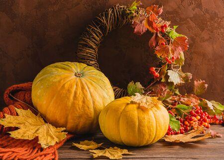 Organischer frischer Kürbis gestrickter gemütlicher Schal rote Beere auf einem hölzernen Hintergrund. Herbsternte. Natürlicher rustikaler Stil. Standard-Bild