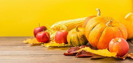 Autumn still life ripe pumpkin apples corn fallen yellow leaves on a yellow background. Thanksgiving Autumn Concept.